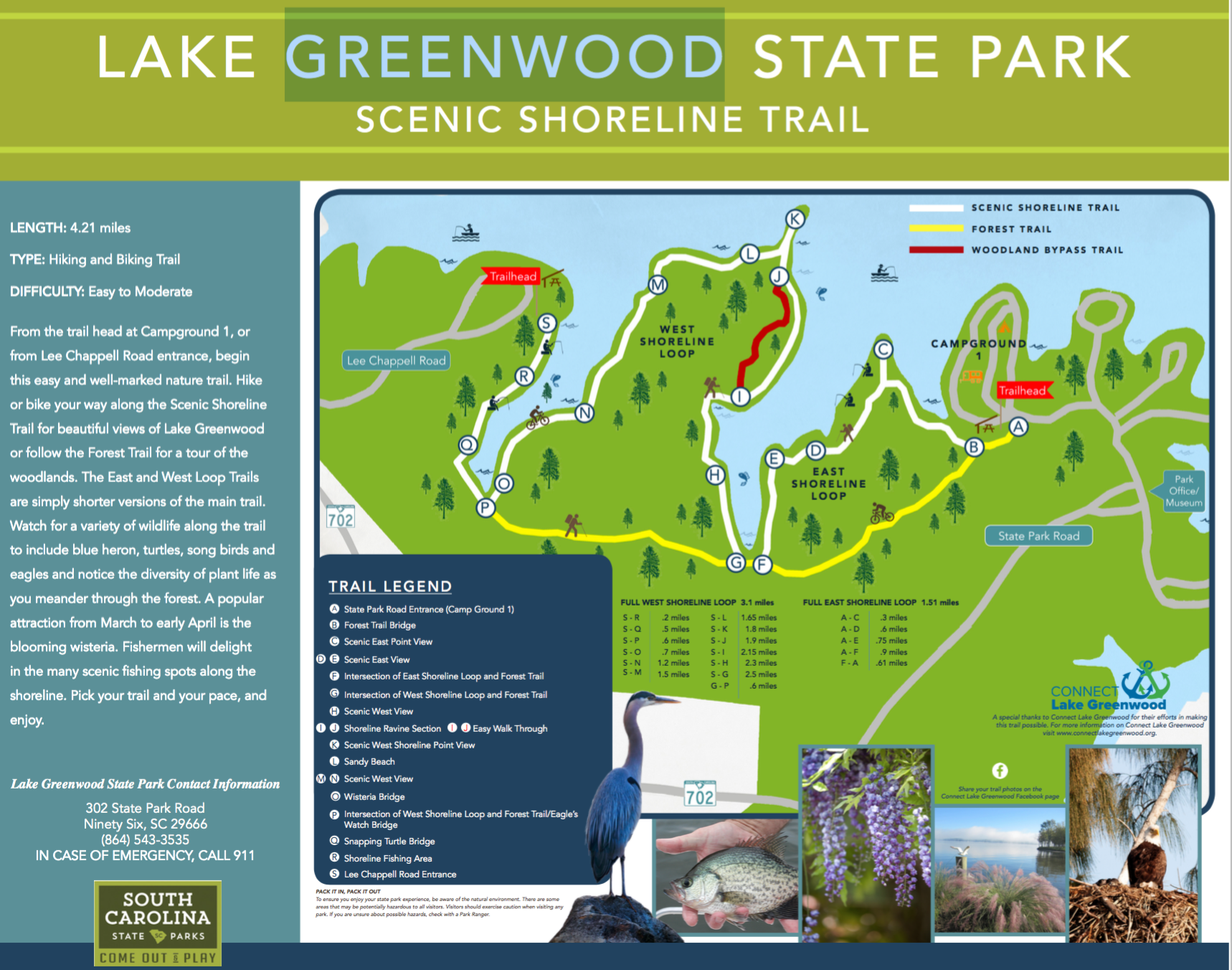 New Lake Trail - Connect Lake Greenwood Sc State Parks Map on connetquot state park trail map, platte river state park map, wa state parks map, maryland parks map, poinsett state park map, south park map, ms state parks map, wi state parks map, new orleans parks map, columbia state park map, jubilee state park trail map, iowa state parks map, hillsborough river state park map, texas state parks map, richmond parks map, jacksonville parks map, oregon state parks map, myakka river state park map, florida parks map, ky state parks map,